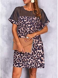 Leopardo Vestido línea A Manga Corta Mini Casual Patinador Vestidos de moda