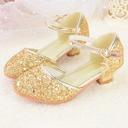 Muchacha Encaje Punta Cerrada Kunstleder Sparkling Glitter El talón bajo Zapatos de niña de las flores