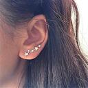 Beautiful Alloy Women's Fashion Earrings