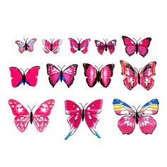 Lovely Butterfly Design PVC Fridge Magnet (set of 12)