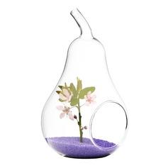 päronformad Glas Vas