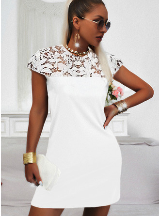 Lace Solid Shift Short Sleeves Mini Elegant Dresses