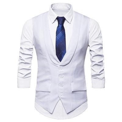 Klasický Polyester Viskóza Pánská vesta