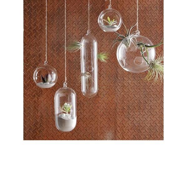Durchmesser 10cm Schön Einfache Hängen Glas Vase (In Einem Stück Verkauft)