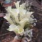 Refined Free-Form Silk Flower Bridal Bouquets -